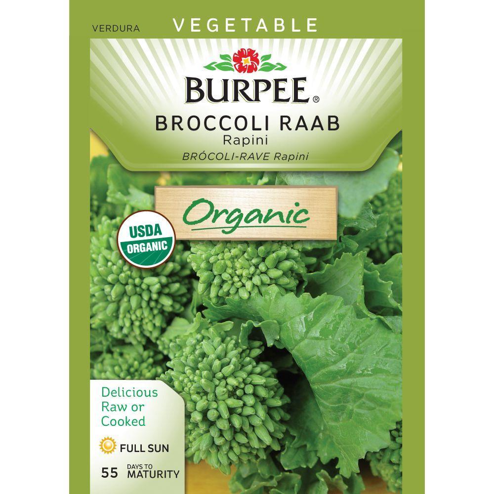 Burpee Rapini Organic Broccoli Raab Seed