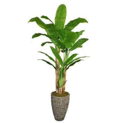 86 in. Tall Banana Tree with Real Touch Leaves in 16 in. Fiberstone Planter