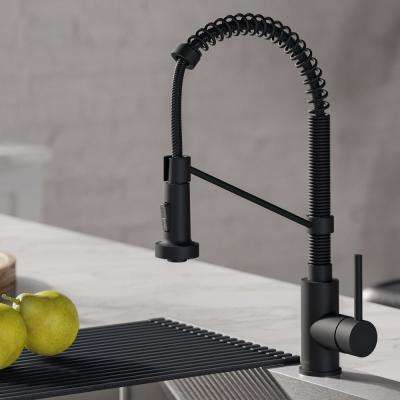 Bolden Single-Handle Pull-Down Sprayer Kitchen Faucet with Dual Function Sprayhead in Matte Black