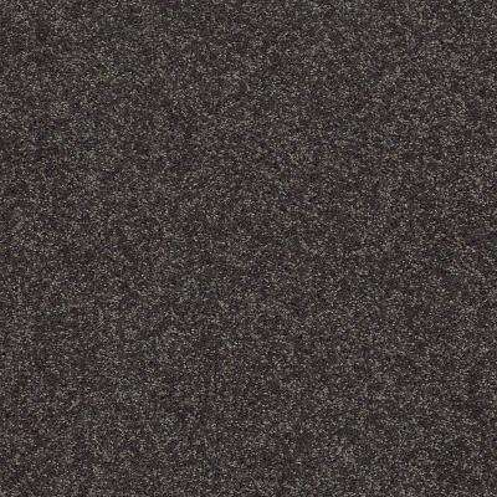 Carpet Sample - Slingshot III - In Color Black Tie Affair 8 in. x 8 in.