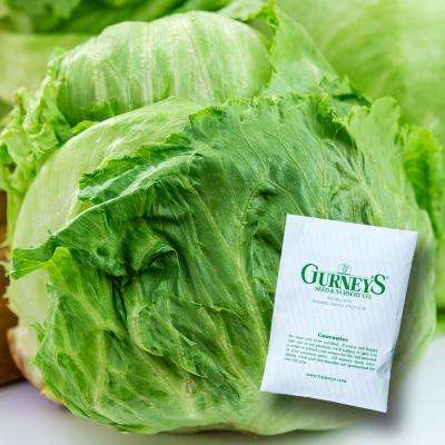Lettuce Head Ithaca (500 Seed Packet)
