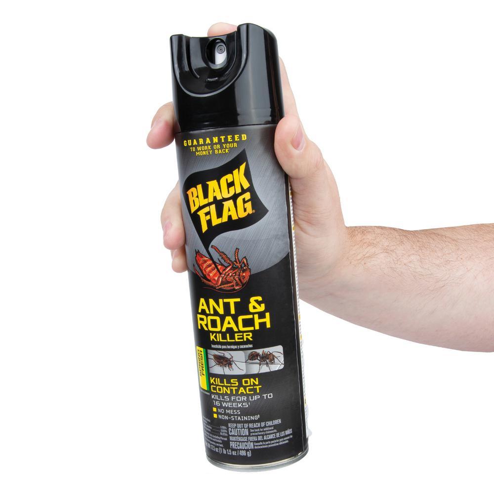 Black Flag Ant and Roach Killer 17 5 oz  Aerosol Spring Fresh Scent Spray