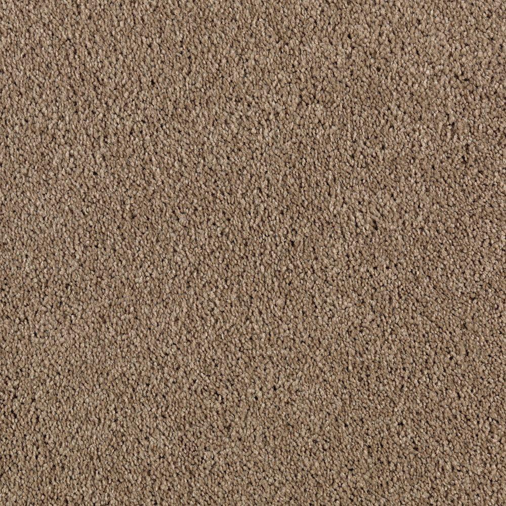 Ambrosina II - Color Worn Leather Texture 12 ft. Carpet