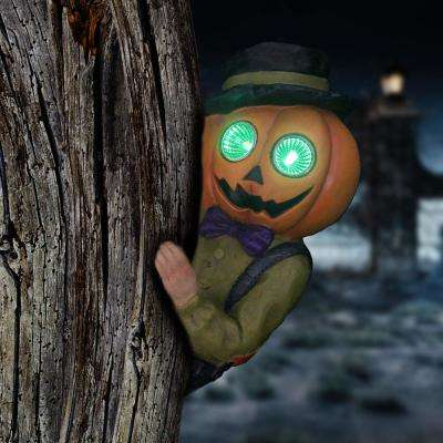 9 in. Solar Pumpkin Man Tree Hugger