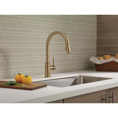 Trinsic Single-Handle Pull-Down Sprayer Kitchen Faucet with MagnaTite Docking in Champagne Bronze