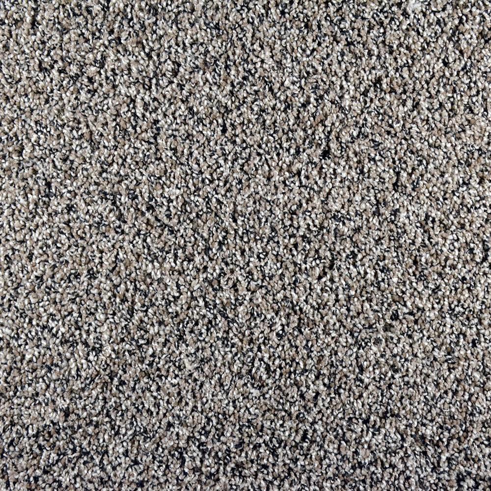 Carpet Sample - Adventurous - Color Daring Twist 8 in. x 8 in.