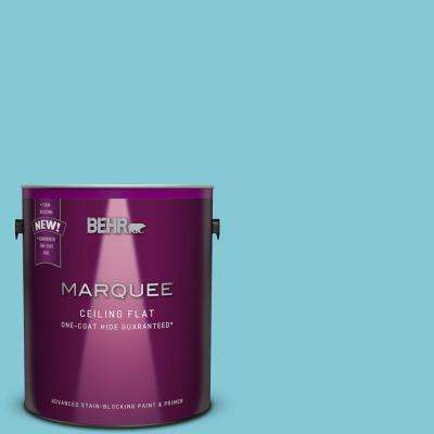 1 gal. #MQ4-50 Tinted to Not a Cloud in Sight One-Coat Hide Flat Interior Ceiling Paint and Primer in One