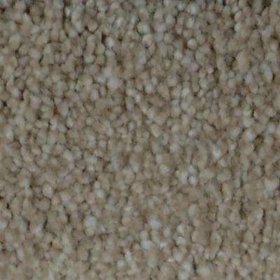 Carpet Sample - Harvest I - Color Flagstaff Texture 8 in. x 8 in.