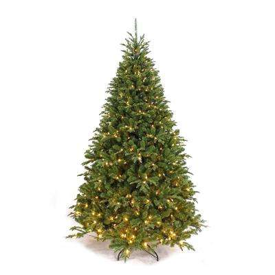 pre lit frasier artificial christmas tree with warm white led light - What Kind Of Trees Are Christmas Trees