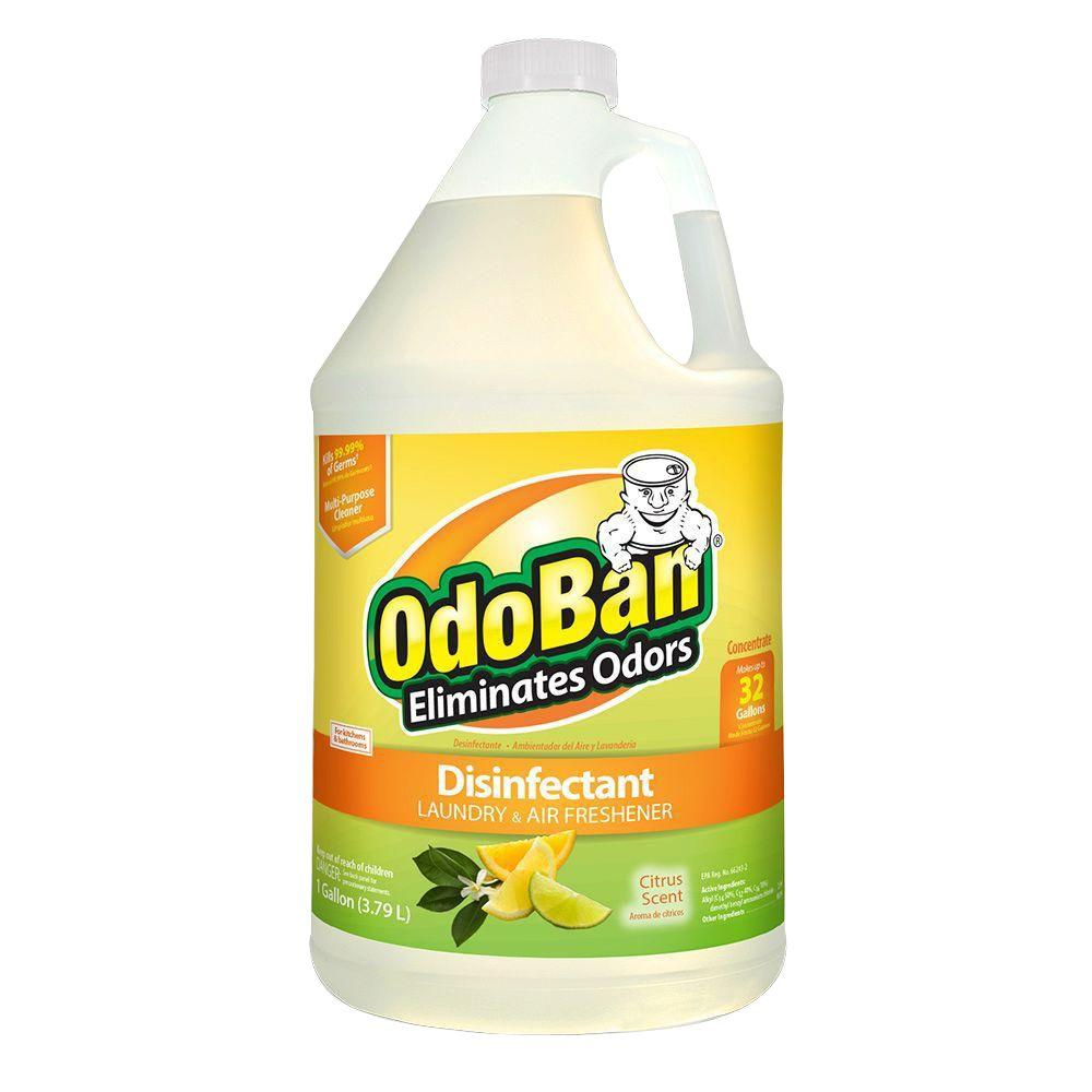 OdoBan 1 Gal. (Case of 4) Citrus Disinfectant, Laundry and Air Freshener, Mold and Mildew Control, Multi-Purpose Concentrate