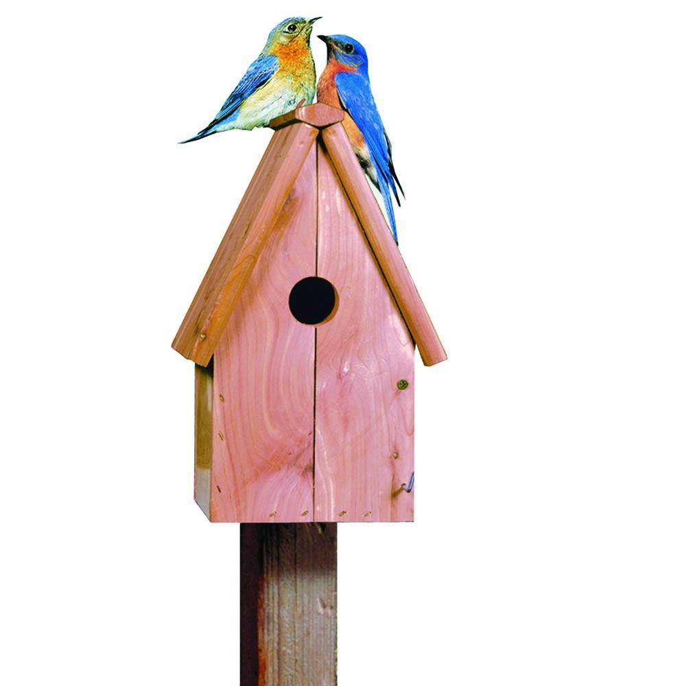Perky-Pet Bluebird Home