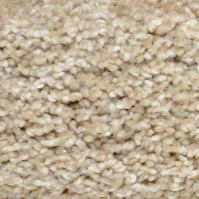 Carpet Sample - Great Moments II (S) - Color Outback Texture 8 in. x 8 in.