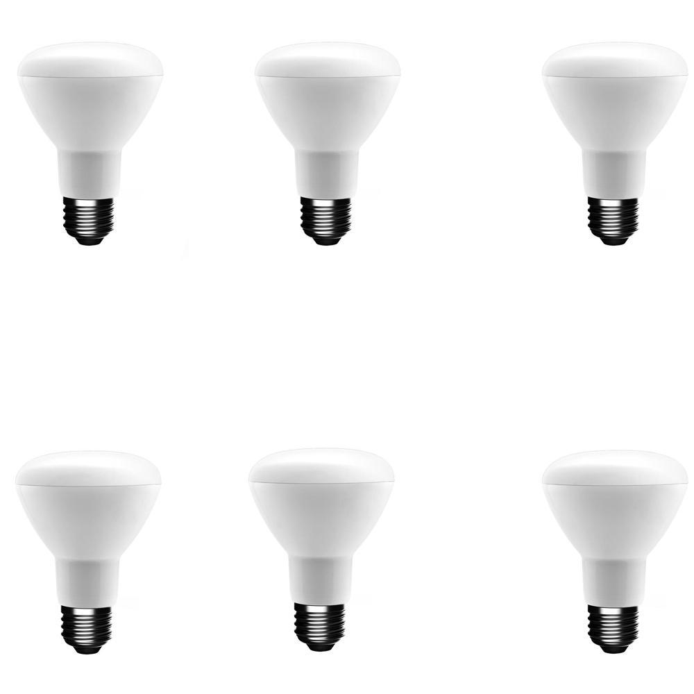 50-Watt Equivalent BR20 Dimmable CEC LED Light Bulb Bright White (6-Pack)