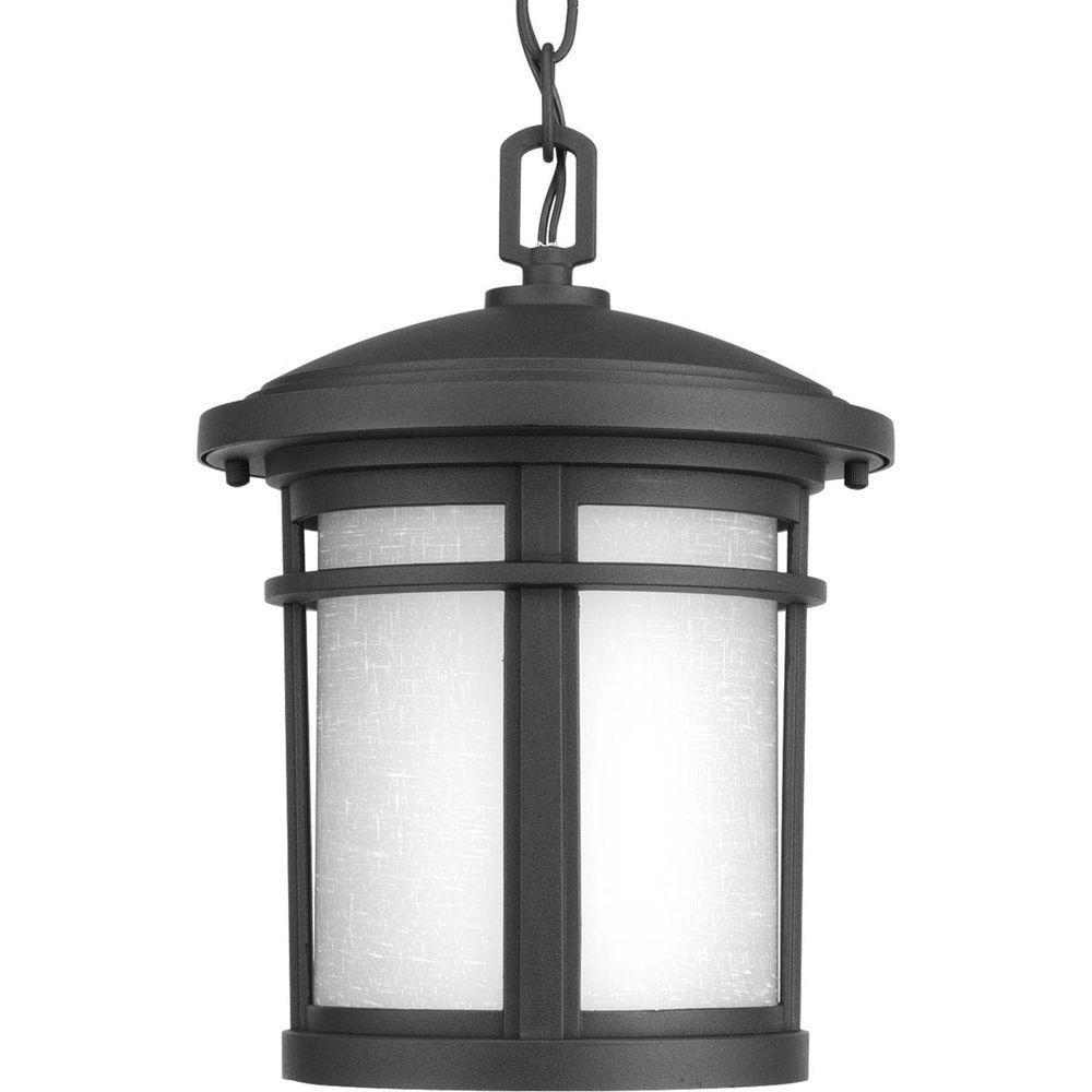 Wish Collection 1-Light Outdoor Black Hanging Lantern