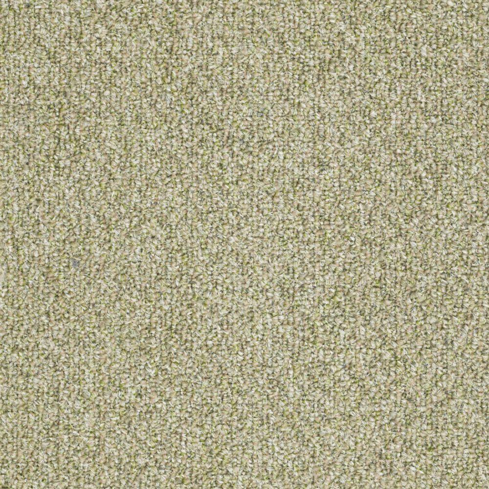 TrafficMASTER Fallbrook - Color Willow Winds 12 ft. Carpet