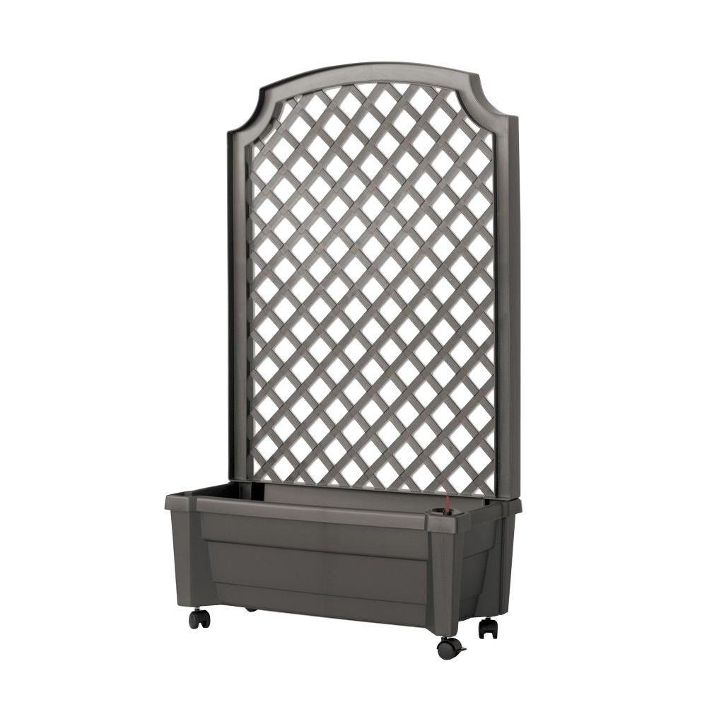 Calypso 31 In X 13 In Anthracite Plastic Planter With Trellis And
