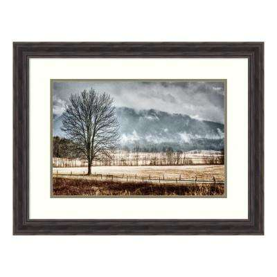 """Solitude"" by Todd Ridge Framed Wall Art"