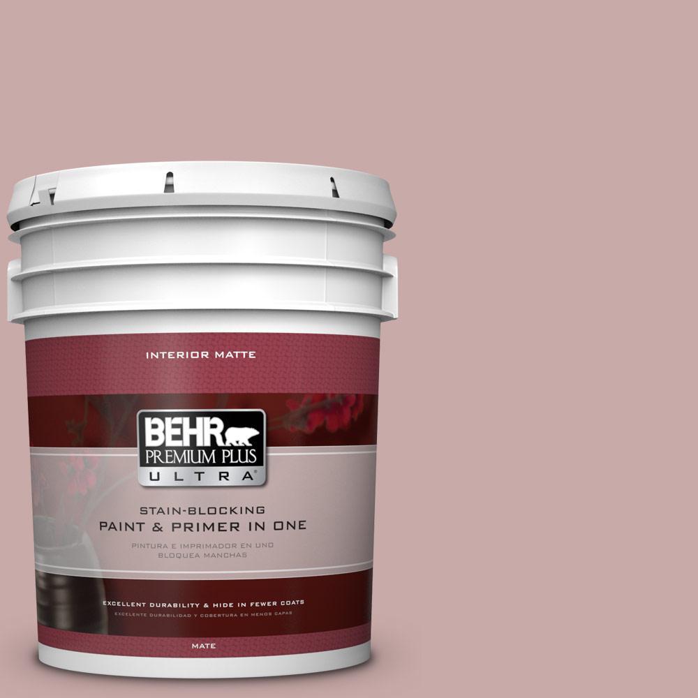 5 gal. #130E-3 Rosy Tan Flat/Matte Interior Paint