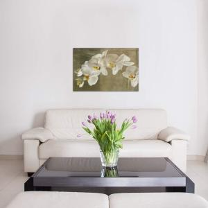 Painted Orchid By Symposium Design Canvas Wall Art