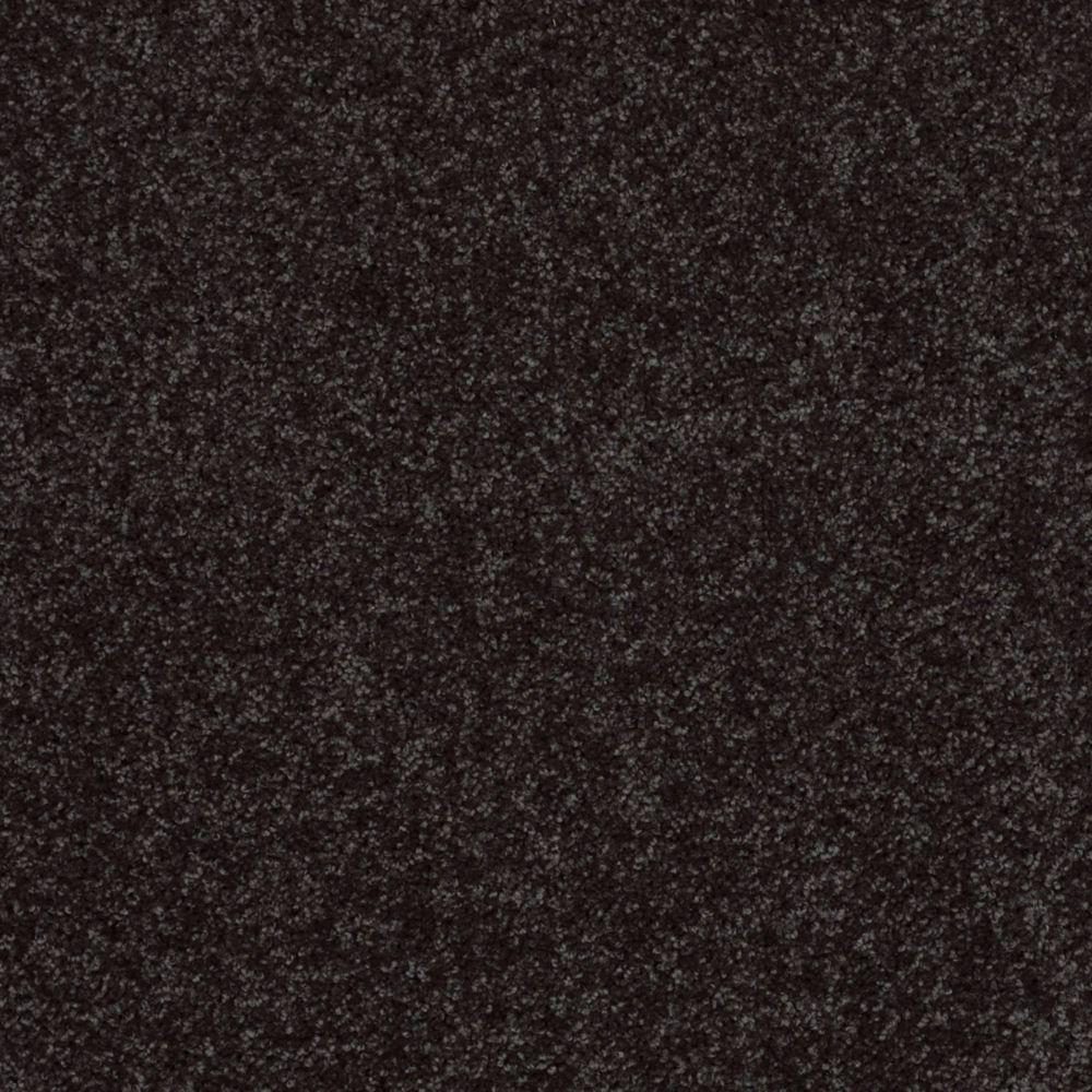 TrafficMASTER Palmdale I - Color Stallion 12 ft. Carpet