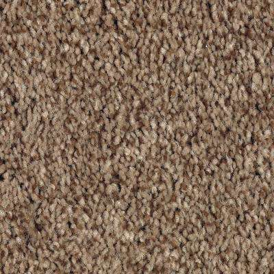 Carpet Sample - Jump Street - Color Wilderness Texture 8 in. x 8 in.
