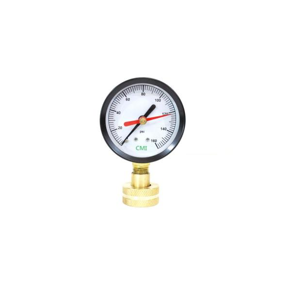 0 - 160 psi 2.5 in. Dial 3/4 in. Brass FNPT Water Test Gauge (2-Pack)