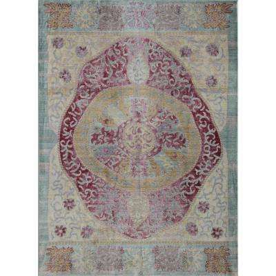 Ambrosia Ruby Red Red 4  ft. 0 in. x 6  ft. 0 in. Rectangular Area Rug