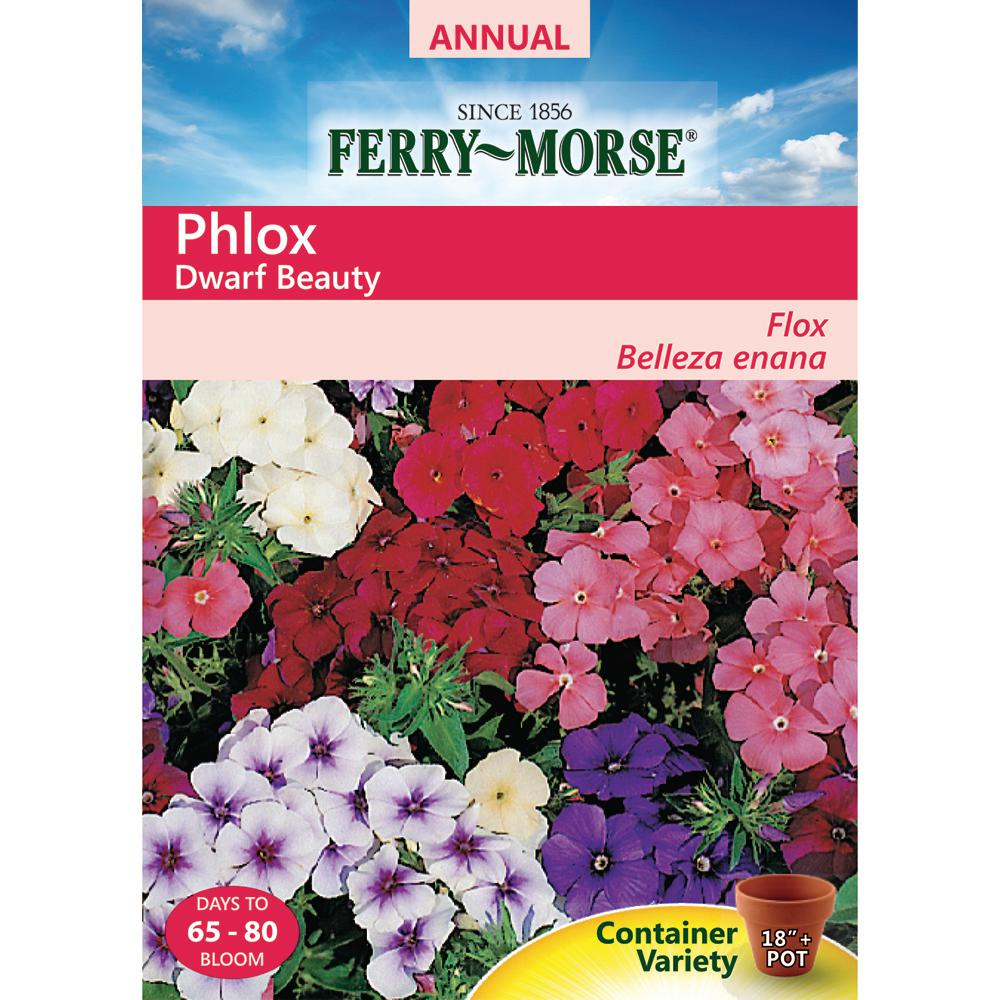 Ferry Morse Phlox Annual Dwarf Mix Seed