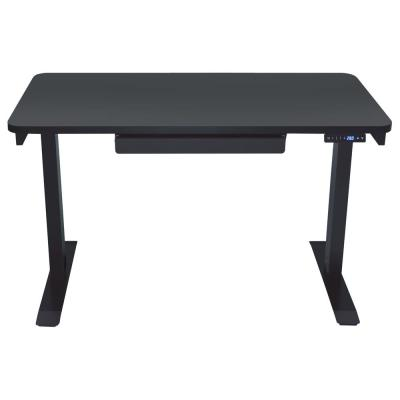 Home Series Black Electric Height Adjustable Sit and Stand Desk