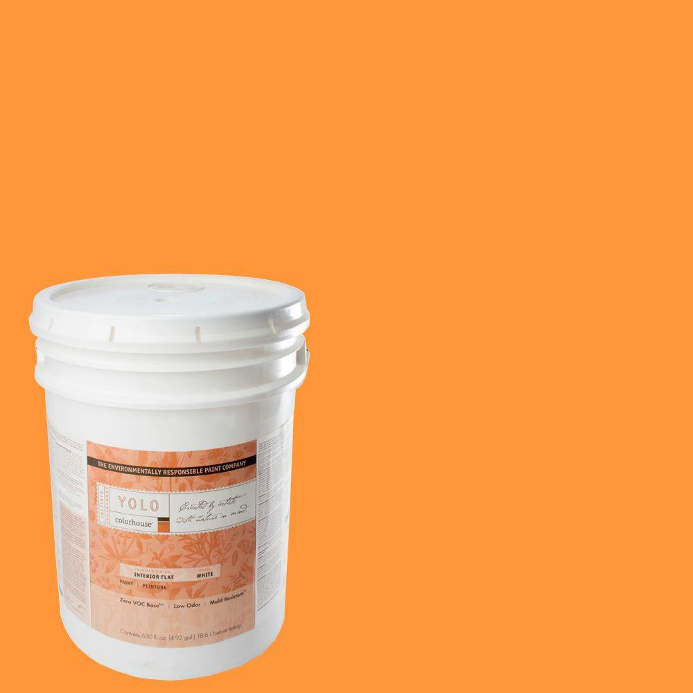 YOLO Colorhouse 5-gal. Create .02 Flat Interior Paint-DISCONTINUED