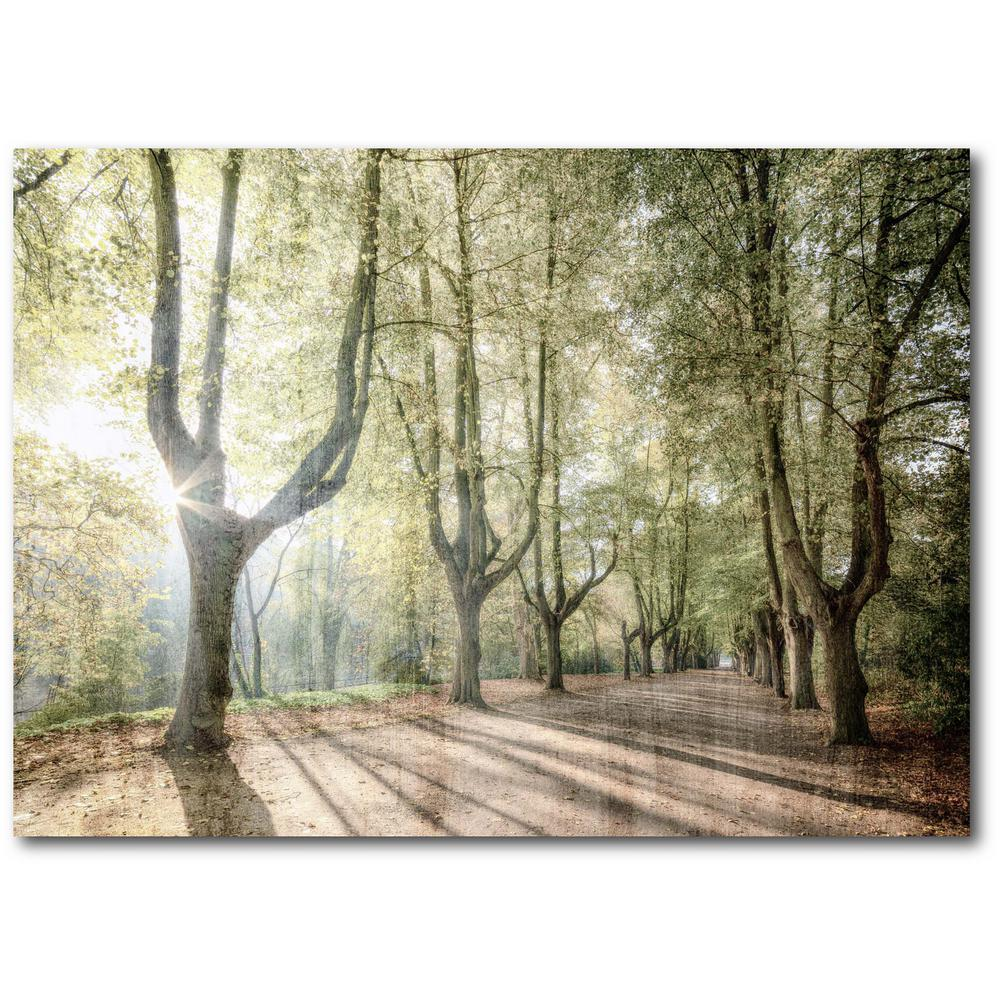 Courtside Market Sunlight Streams 16 in. x 20 in. Gallery-Wrapped Canvas Wall Art, Multi Color was $70.0 now $38.93 (44.0% off)