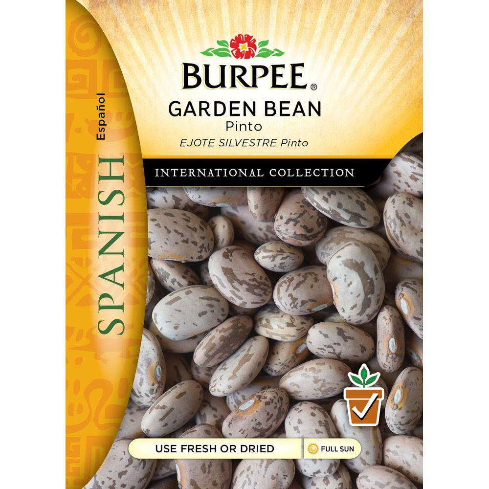 recipe: bush bean seeds home depot [23]