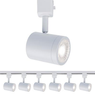 Charge 1-Light White LED Line Voltage Track Head, 3000K for H Track (6-Pack)