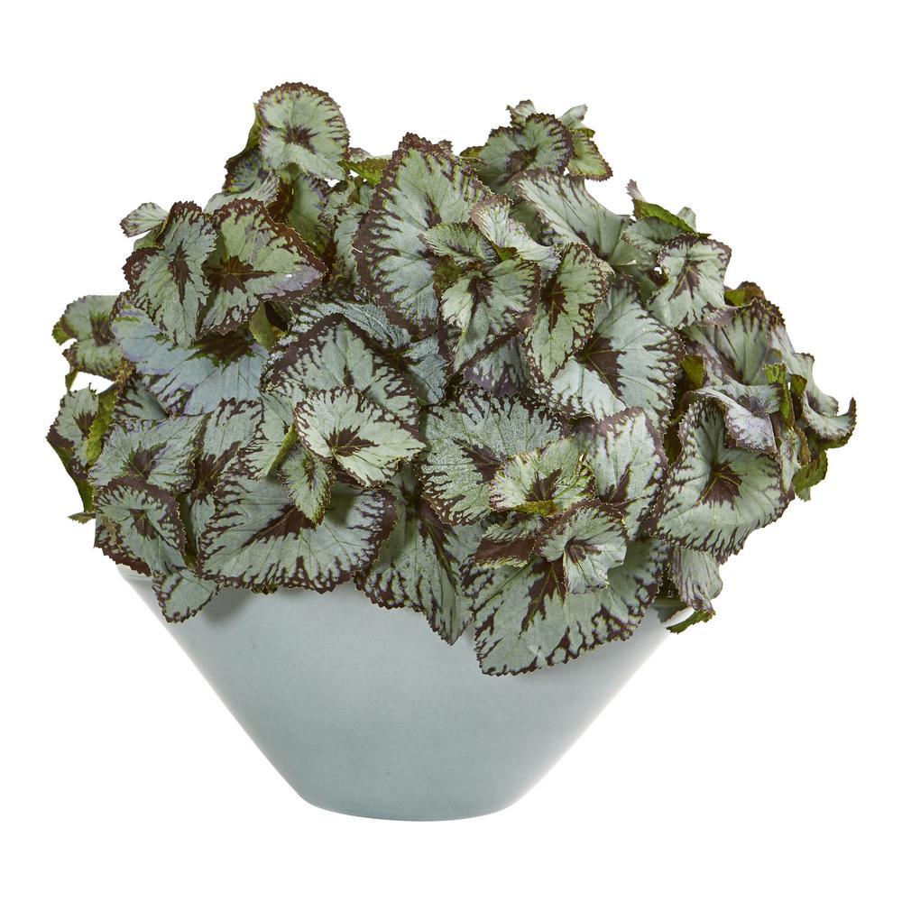 Indoor Rex Begonia Artificial Plant in Green Vase