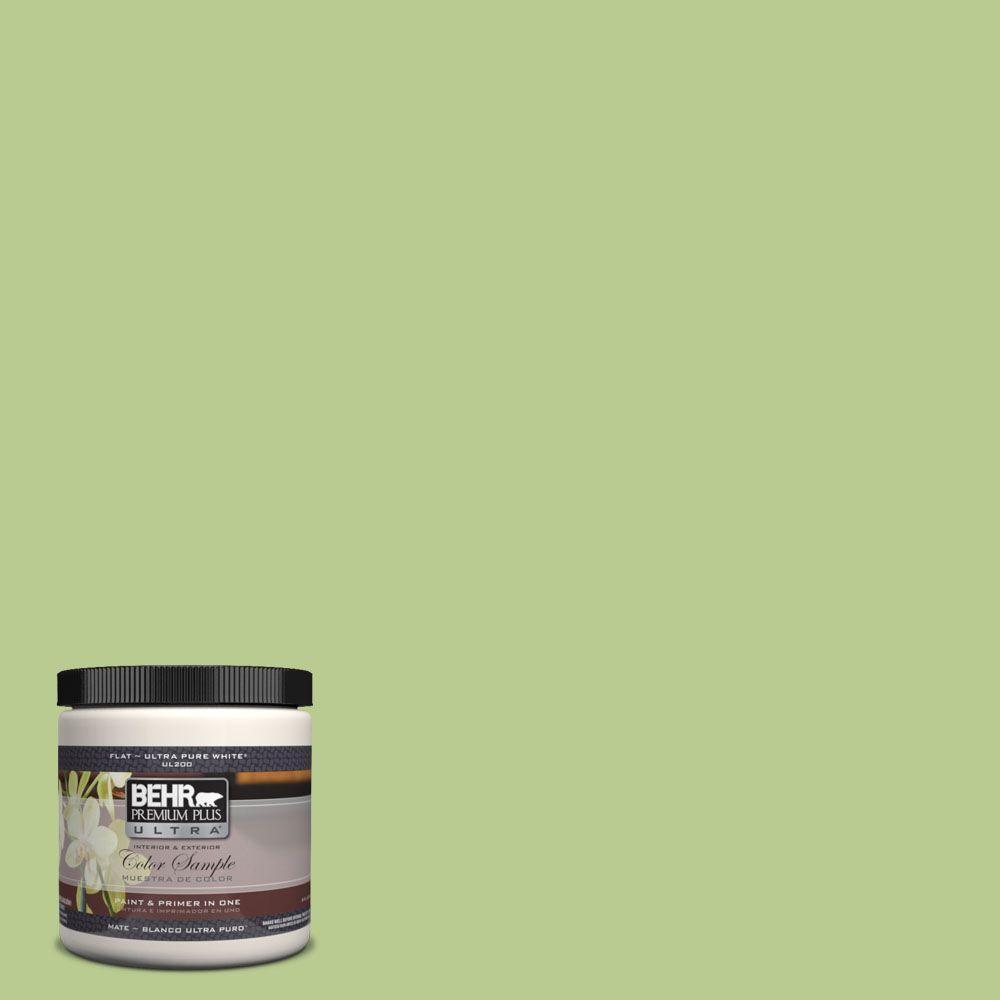 BEHR Premium Plus Ultra 8 oz. #420D-4 Marsh Fern Interior/Exterior Paint Sample