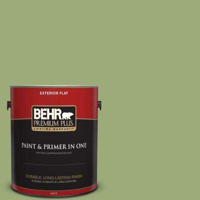 bic 12 siamese green paint - Green House Paint Colors