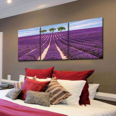 "20 in. x 60 in. ""Lavender Field"" Printed Canvas Wall Art"