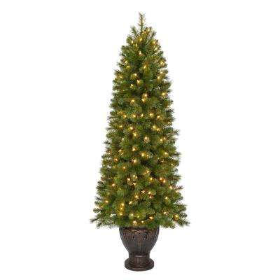 6.5 ft. Pre-Lit LED Wesley Spruce Potted Artificial Christmas Tree with 616 Tips and 200 Warm White Lights