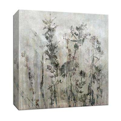 15 in. x 15 in. ''Winter's Lace II'' By PTM Images Canvas Wall Art