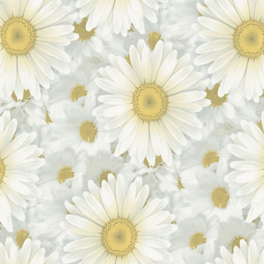 The Wallpaper Company 56 sq. ft. White and Yellow Daisy Fantasy Wallpaper