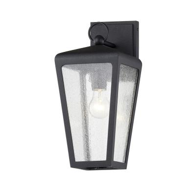 Mariden Textured Black 1-Light Wall Sconce with Clear Seeded Glass Shade
