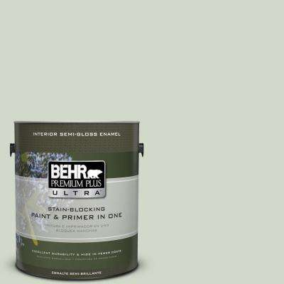 #HDC-CT-25 Bayberry Frost Paint