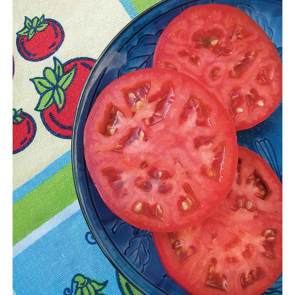 Bonnie Plants 2.32 Qt. Tomato-Beefsteak Red-Heirloom