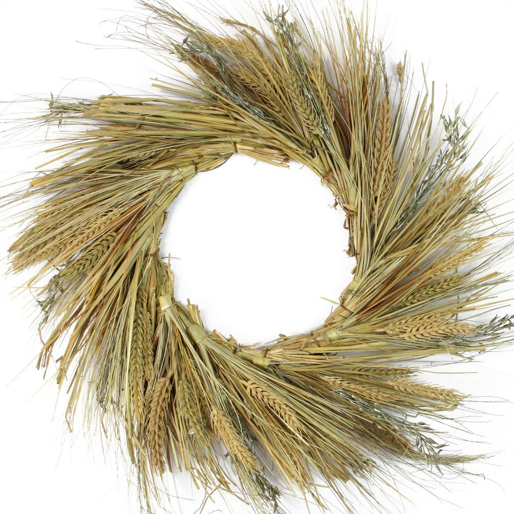 Northlight 22 in. Unlit Autumn Harvest Wheat Grass and Grapevine Thanksgiving Fall Wreath