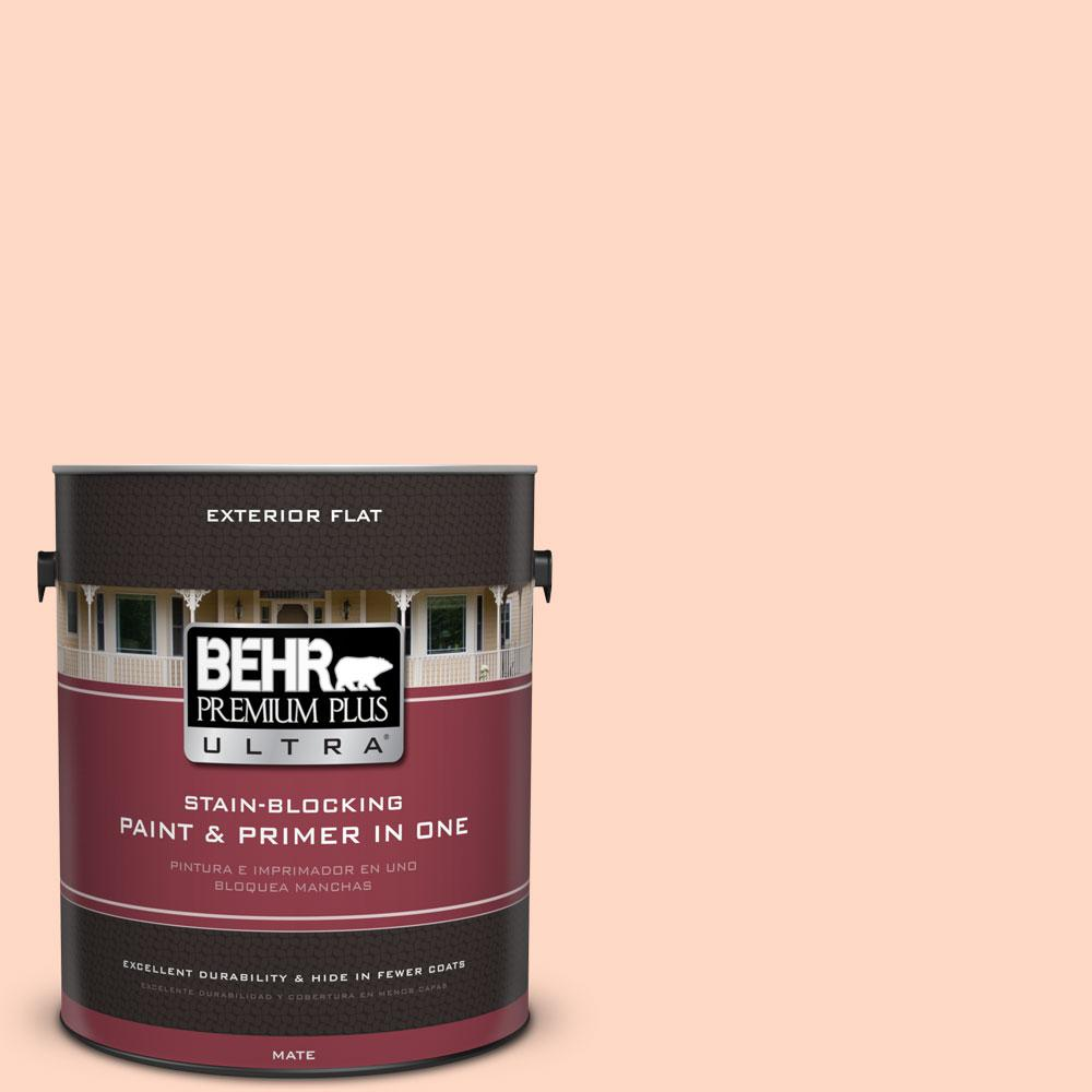 1-gal. #230C-2 Shell Coral Flat Exterior Paint