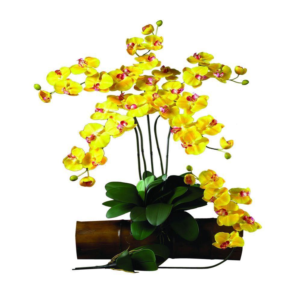 31.5 in. H Gold Phalaenopsis Stem (Set of 12)