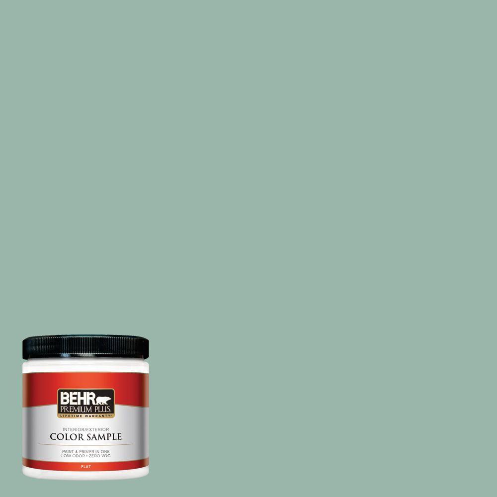 8 oz. #S420-3 Nile River Interior/Exterior Paint Sample