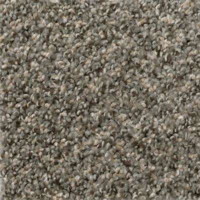 Carpet Sample - Gallop - Color Maverick Texture 8 in. x 8 in.