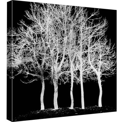 15 in. x 15 in. ''Screened Tree D'' Printed Canvas Wall Art