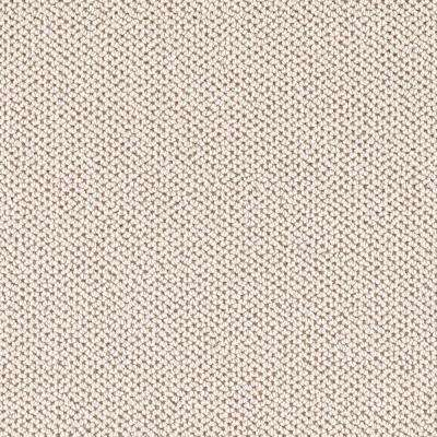 Carpet Sample - Priority - Color Down Feather Loop 8 in. x 8 in.